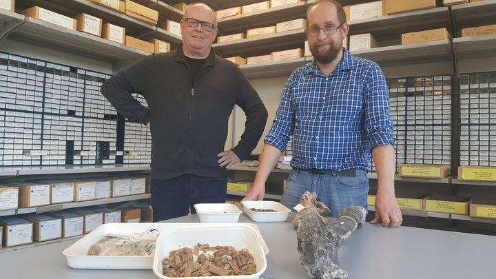 Richard Walter and Nic Rawlence with bone fragments and moa bones in the Advanced Laboratory at the University of Otago.