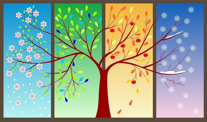 vivaldi the four seasons rnz