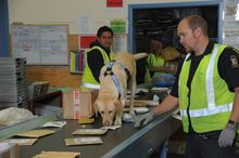 Parcels are inspected at the Auckland International Mail Centre to see if duty and GST are due.