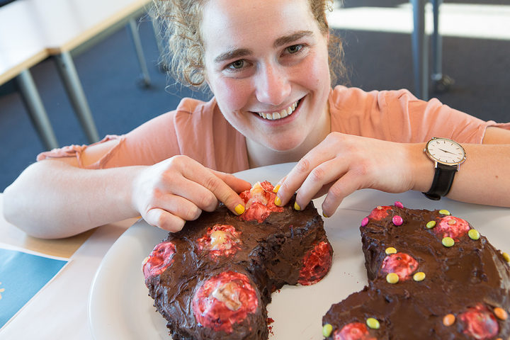 "I incyst you try some thesis representation for ""bake your thesis"" from Lorissa McDougall."