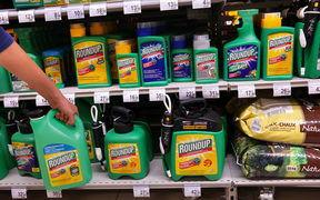 Controversial chemicals not on new safety review list | RNZ News