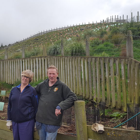 Vicki Carlyon and Mike Stewart have been working on transforming their Lyttelton property with native plantings for the last three years.Photo/ Rachel Graham.