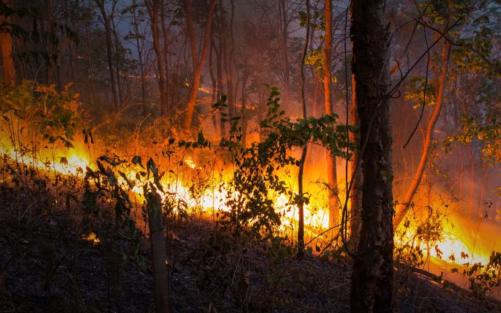 Bushfires out of control in NSW and Queensland, expected to increase