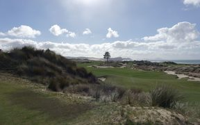 Tara Iti golf course - all the native plants come from Te Uri o Hau's cowshed nursery.