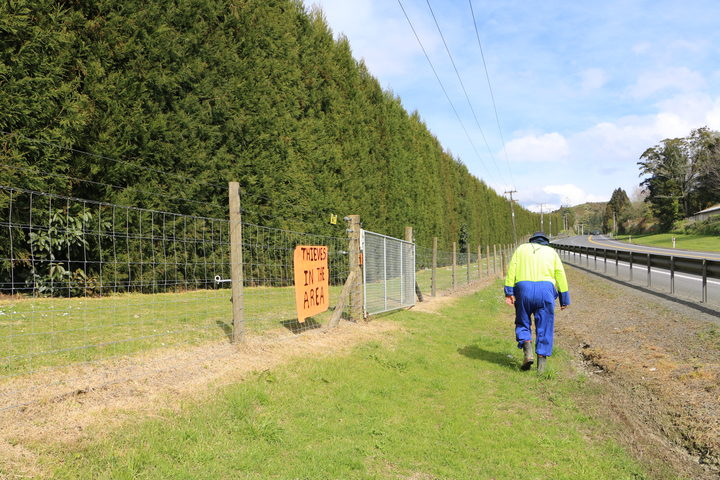 Robin Hanvey walks past the 2-metre high electrified fence that runs along State Highway 29.