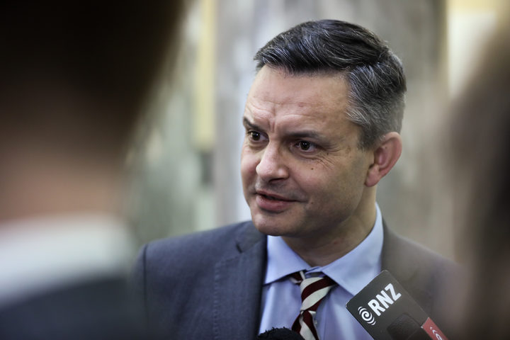 Green Party co-leader James Shaw answers media questions