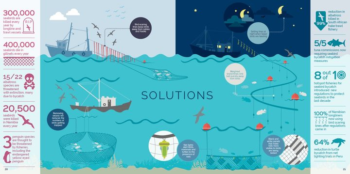 This Albatross Task Force infographic shows some of the ways that fishing boats can avoid accidentally catching and killing seabirds.
