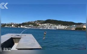 Iconic Wellington $1 million sculpture snapped by swimmer
