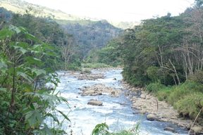Nebilyer River, Western Highlands, Papua New Guinea.