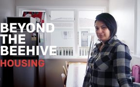 Beyond the Beehive: Housing
