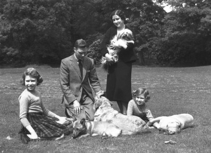 June 1936:  King George VI and Queen Elizabeth (Queen Elizabeth the Queen Mother) with the Royal Princesses Elizabeth (later Queen Elizabeth II) and Margaret (1930 - 2002) in the grounds of Windsor Castle with four dogs.  (Photo by Lisa Sheridan/Studio Lisa/Getty Images)