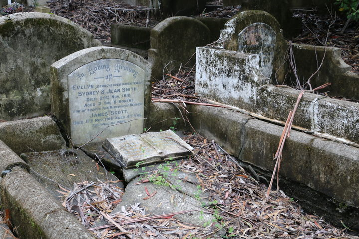 Karori Cemetery, Wellington - One of many graves on those who died of the flu in 1918