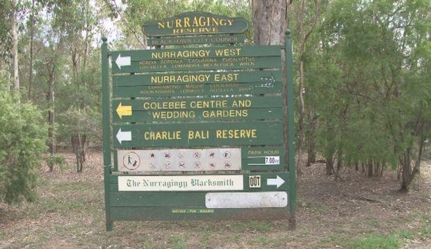 Part of the Nurragingy Reserve in Blacktown New South Wales.