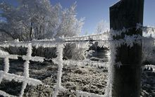 Frost on fencing wire.