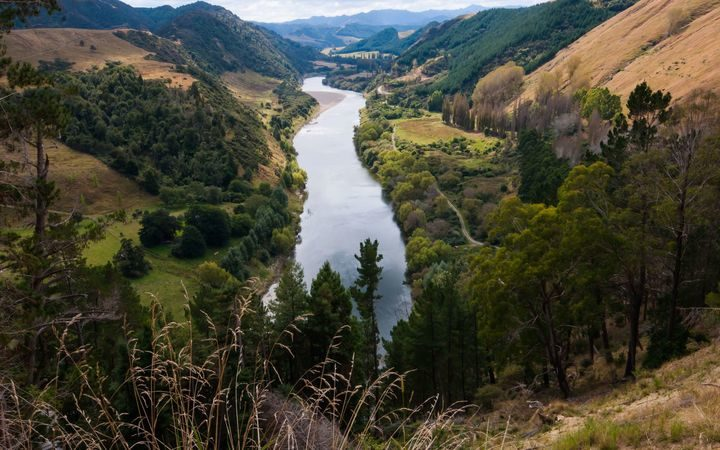 The Whanganui River, also known as Te Awa Tupua.