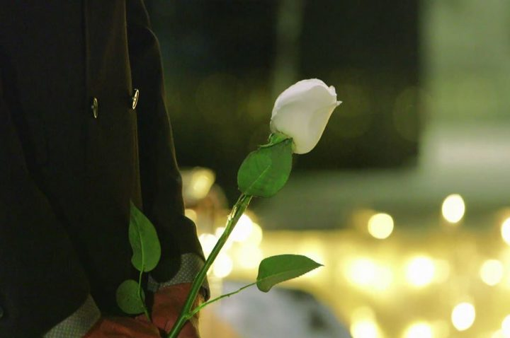 The mysterious white rose.