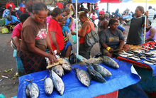Fish being sold at a Solomon Islands food market.