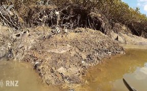 Human faeces and sanitary pads spill into Auckland creek