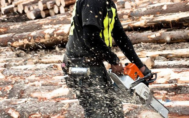 The Forest Industry Contractors Association has slammed a recent safety report.
