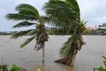 Cyclone, Evan, Fiji, Trees, floods, flooding