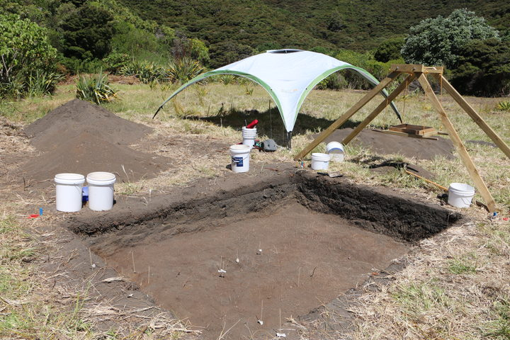 The dig site at Mangahawea Bay on Moturua Island, Bay of Islands.