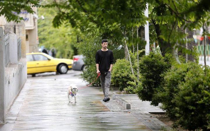 A man walks his dog in Tehran, Iran.