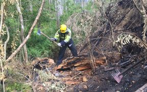 Firefighters battle a scrub fire in Northland.