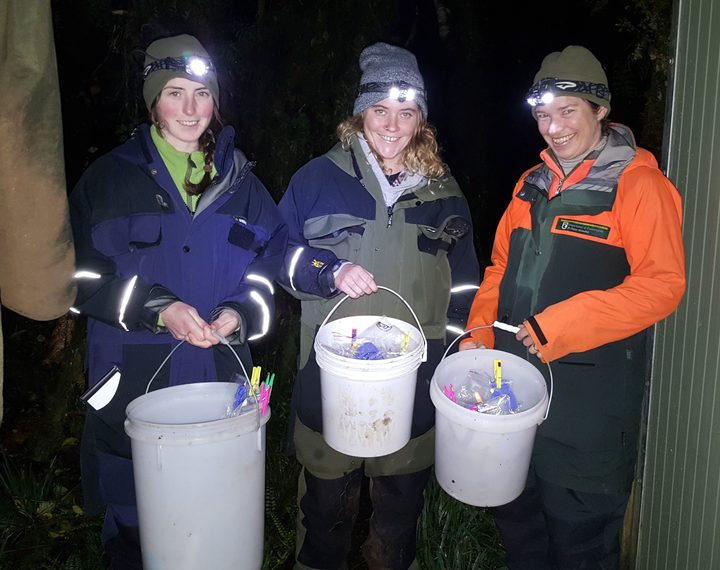 Leigh Roderick, Gabby Keating and Abi Quinnell, at two o'clock in the morning, about to return 40 frogs (in plastic bags in the buckets) to the exact spot they were collected from.