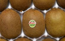 China is currently New Zealand's third biggest kiwifruit market behind Japan and Spain.