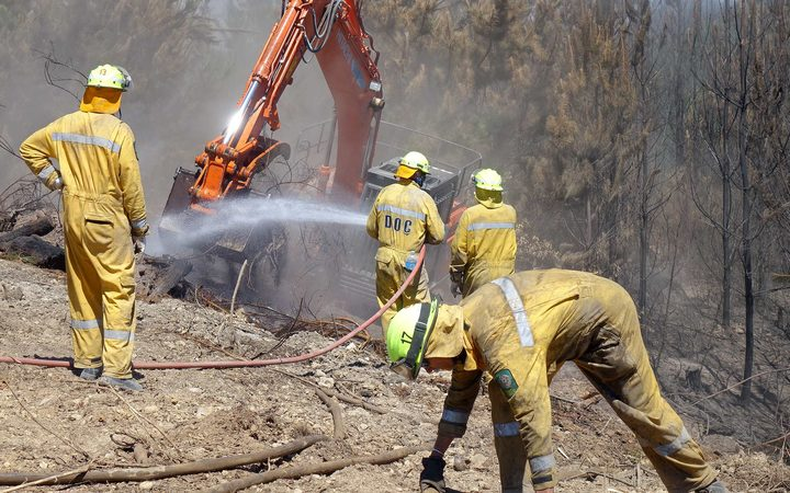 Men in hard hats and yellow jumpsuits with digger on firebreak alongside treesamonst