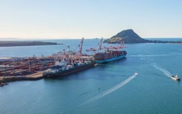 Port of Tauranga.