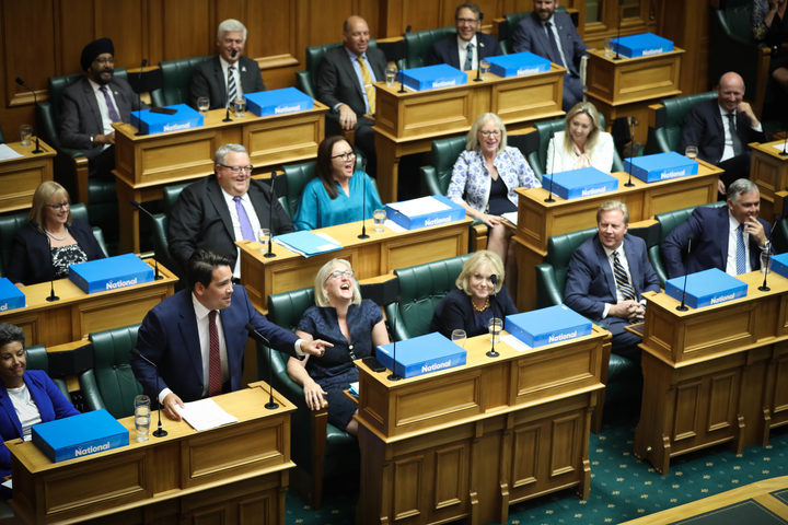 Leader of the Opposition Simon Bridges points the finger at the Government during the debate on the Prime Minister's Statement.