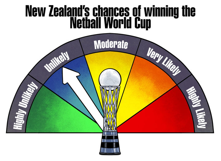 Year of the Cups Netball graphic
