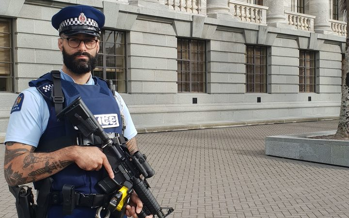 Armed police at parliament.