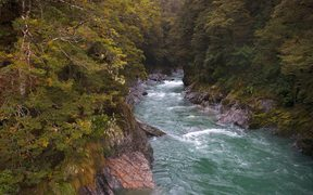 The Hollyford River in Fiordland.
