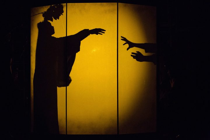 The Dreamer uses shadow theatre, music and dance to tell its story