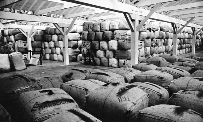 Bales of wool stacked in a wool store. Dominion post (Newspaper): Photographic negatives and prints of the Evening Post and Dominion newspapers. Ref: EP-Trade and Commerce-Wool and Wool prices-01. Alexander Turnbull Library, Wellington, New Zealand. /records/22328992