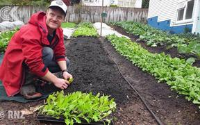 Urban farmer living the good life in Taranaki