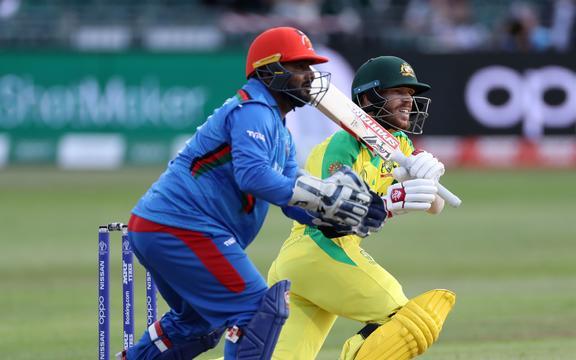 David Warner bats (plus wicketkeeper Mohammad Shahzad)