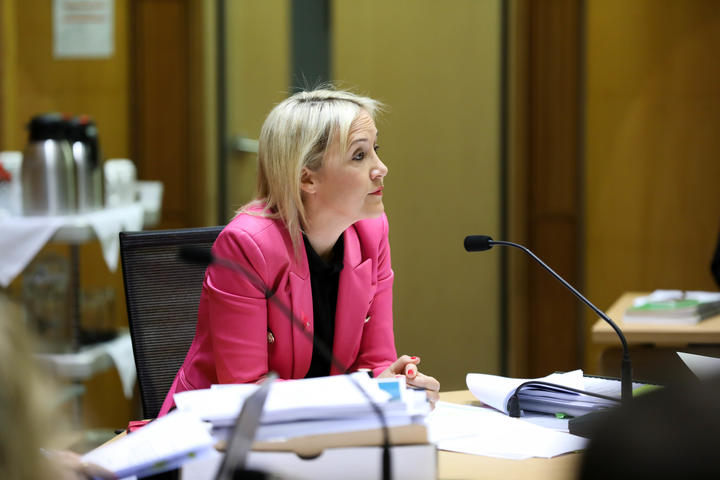 National MP Nikki Kaye on the Education and Workforce Committee questions Minister of Education Chris Hipkins as part of the Estimates Hearings.