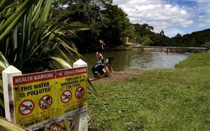Children swimming in a polluted Northland river.