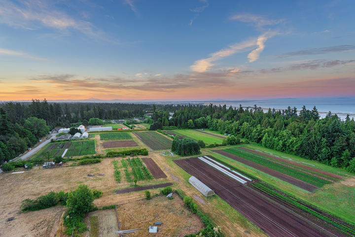 The 24 hectare farm located on University of British Columbia campus, on the traditional, ancestral, and unceded territory of the Musqueam people.