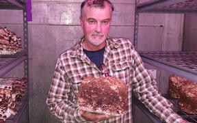 Hillcroft Mushrooms co-owner Bruce Mackinnon with some of his product.