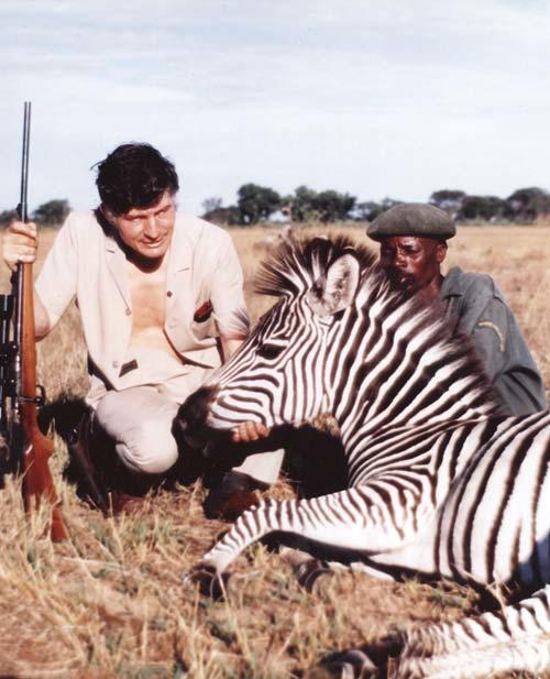 Colin Murdoch poses with a tranquilised Zebra.