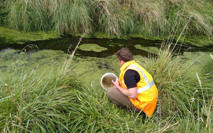 The fish were moved from drains on Daleton Farm.