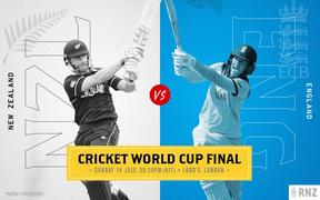 Cricket World Cup final graphic