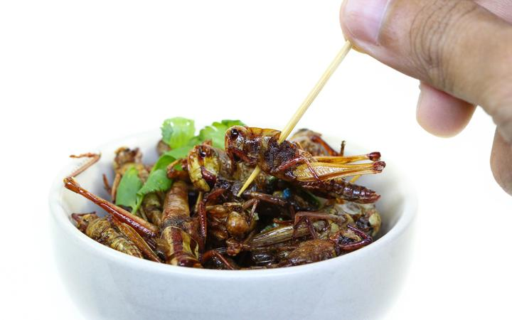 Fried insect.