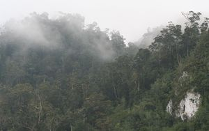 Papua New Guinea's Southern Highlands.