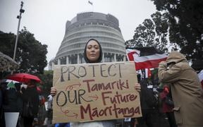 Sarah Taiapa at the Oranga Tamariki protest at Parliament today.