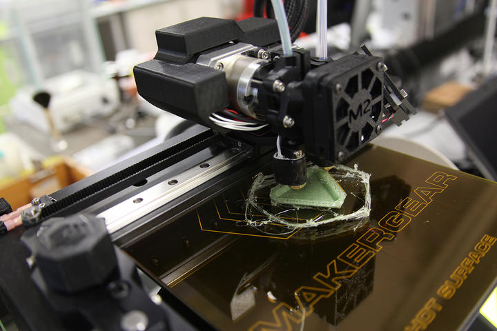 Going bio: the next frontier in 3D and 4D printing